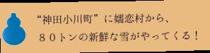 yudaruma-topcon1